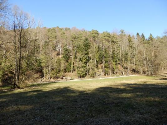 Forêt communale de Lutter